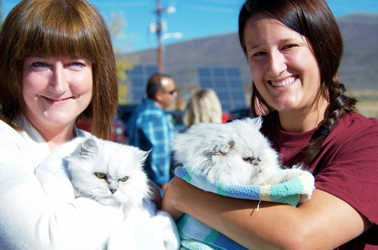 Maggie Niehoff and Jenna Mitchell hold two recently adopted Persian cats from the Colorado Animal Rescue shelter in Spring Valley.