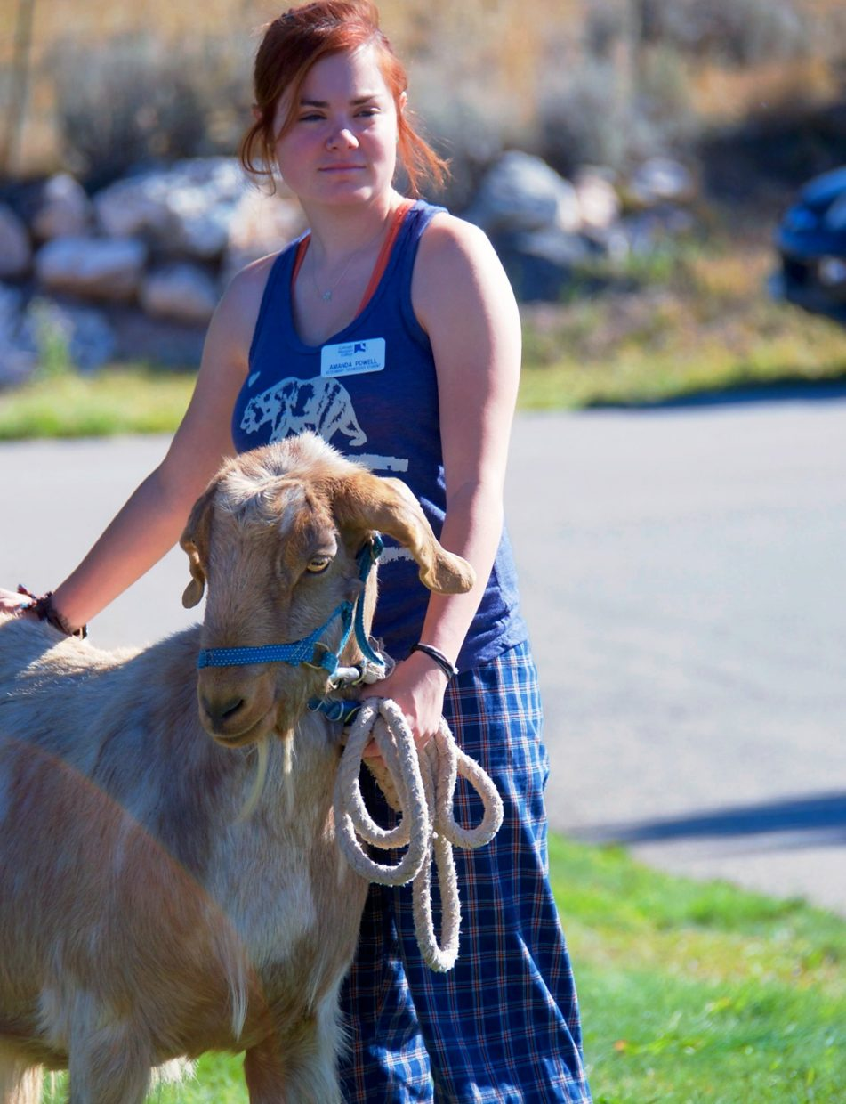 Amanda Powell, a vet tech student, brought a goat to the event.