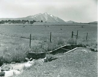In October 1912, potato growers on the Sweet, Sievers, Mt. Sopris and El Jebel ranches eagerly awaited the arrival of Japanese immigrant laborers to harvest the crop. Japanese laborers in the early 20th century often were found working the farms near Carbondale and throughout Garfield County, contributing to the economic advancement of the entire county.