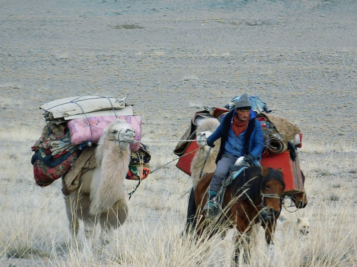 A nomadic family moving from the high country to the valley due to the tough winter. Normally a winter temperature in January and February is negative 40 degrees.