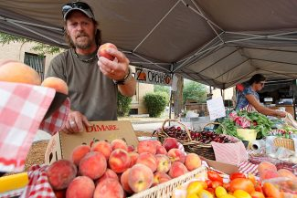 Ken Williams of Zadrozny's Orchard examines a peach while restocking the produce stand, as his wife Kendra manages the register, at the Glenwood Springs Farmer's Market held on Ninth Street last Tuesday evening. The market is one of the few in the region equipped to accept SNAP payments so that recipients of federal nutritional aid can purchase locally grown produce.