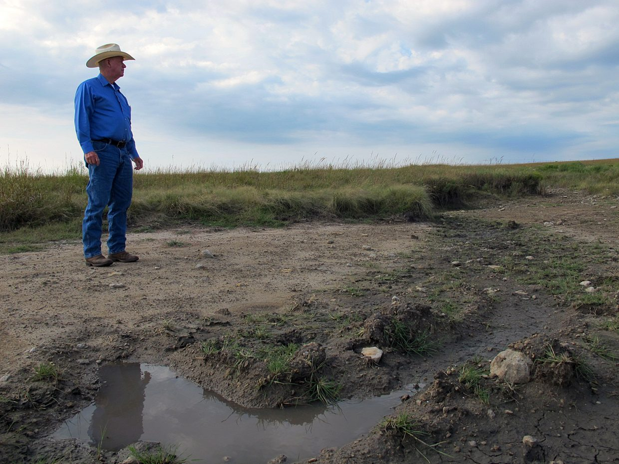 In this Sept. 24, 2014 photo, cattle rancher Melvin Reed stands inside a patch of land that was denuded by an oilfield wastewater spill near Shidler, Okla. Brine spills sap moisture from land and create a hard, crusty surface that rainwater can't penetrate, preventing plants from taking root and often worsening erosion.