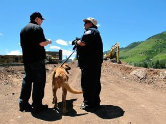 The skeletal remains found in a Lionshead construction site are a Caucasian male. How old they are and how the man died are still to be determined by investigators. Rescue and recovery dogs have been assisting in the search.