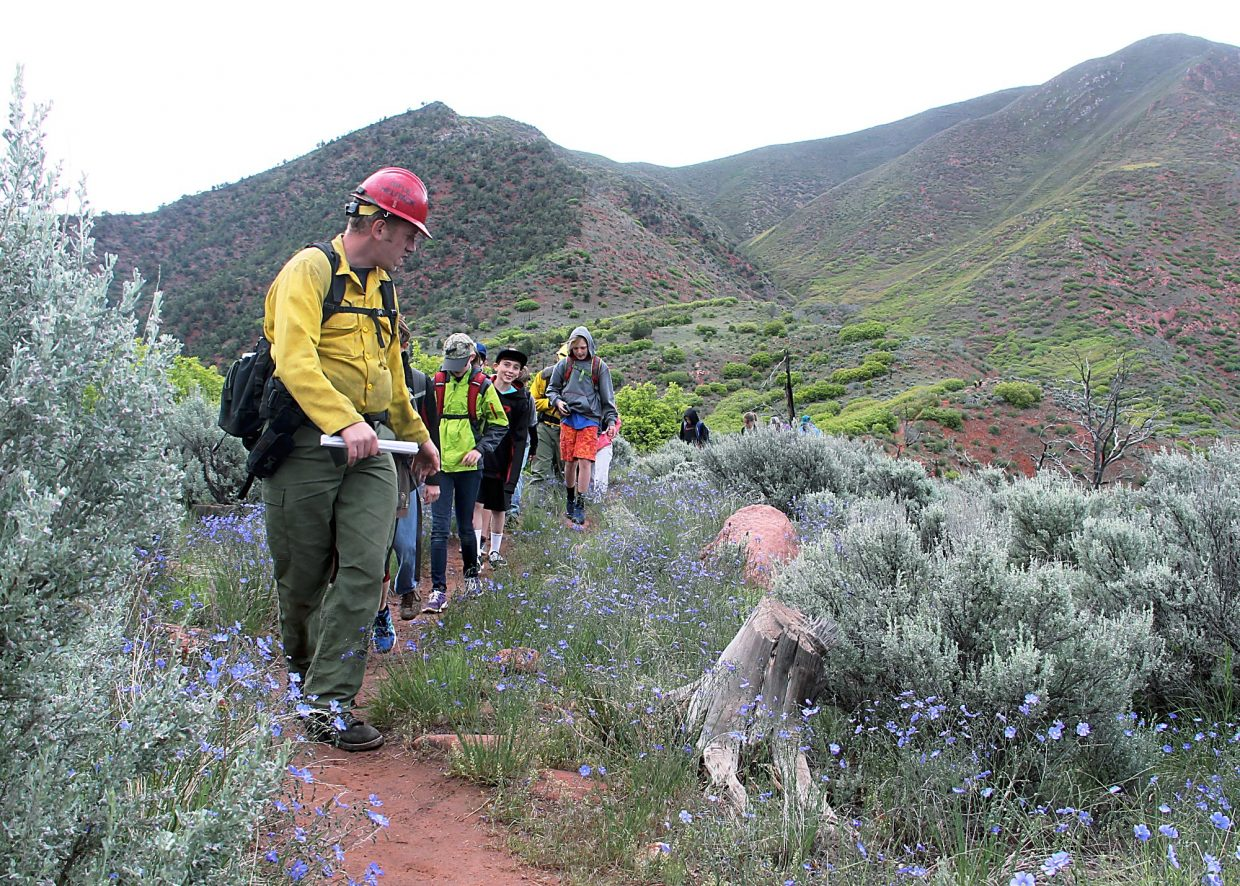 Aaron Roggenkamp, left, leads students through a field of flax.