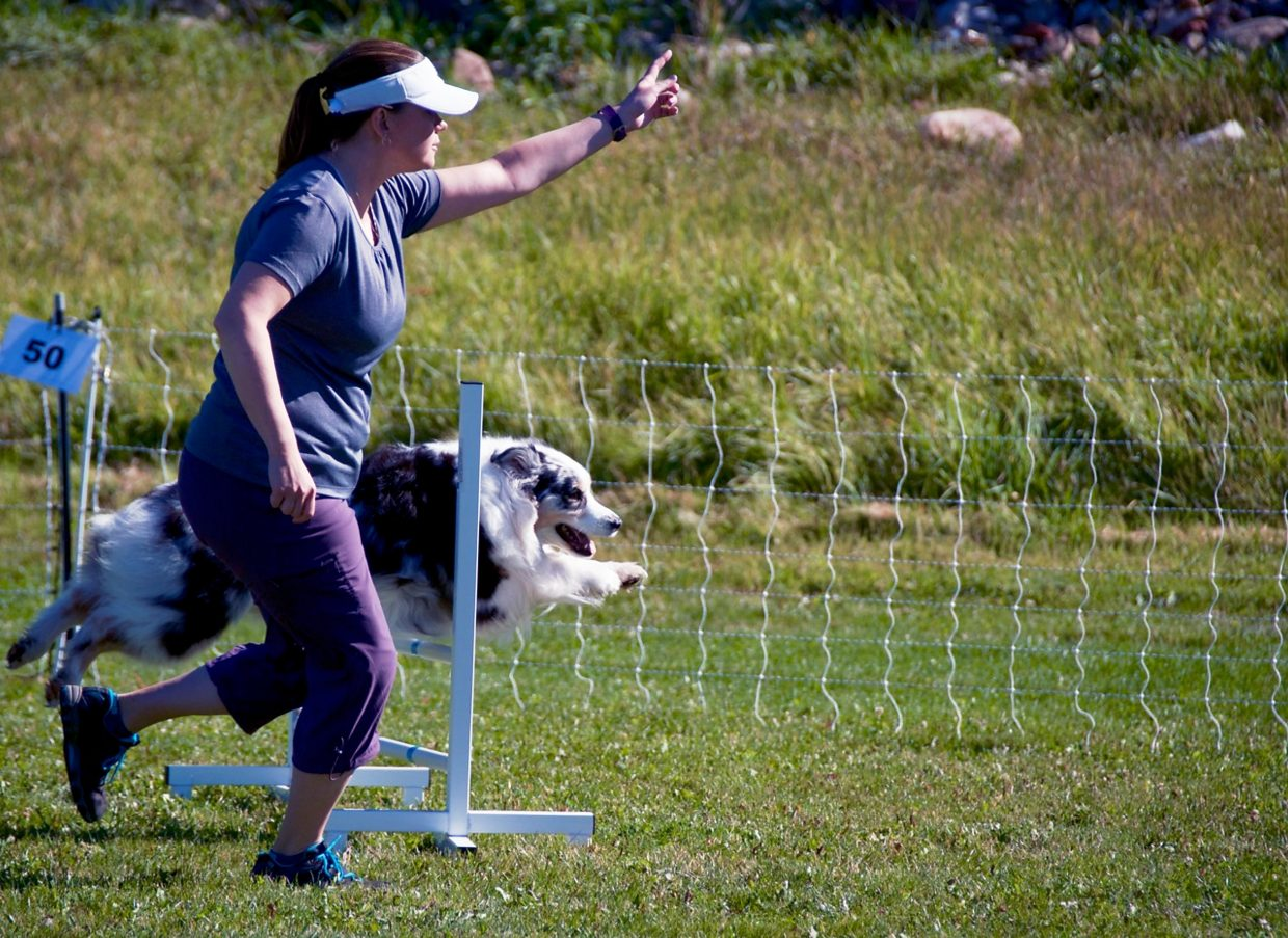 A trainer runs with her Australian Shepherd over a hurdle during the  DOCNA national championship competition on Friday at North Face Park in Carbondale.