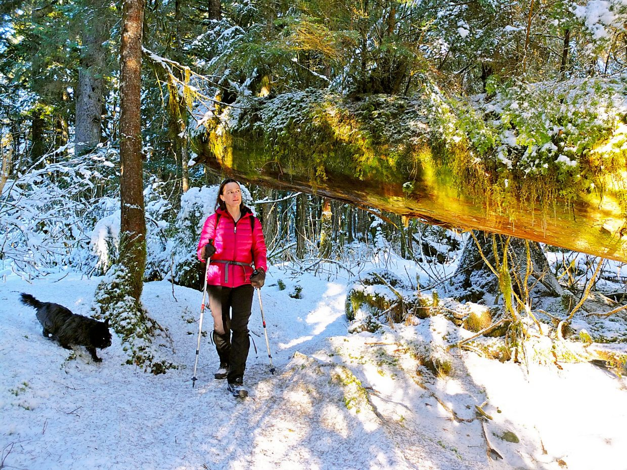 Hiking in the snowy woods requires some common-sense clothing guidelines.
