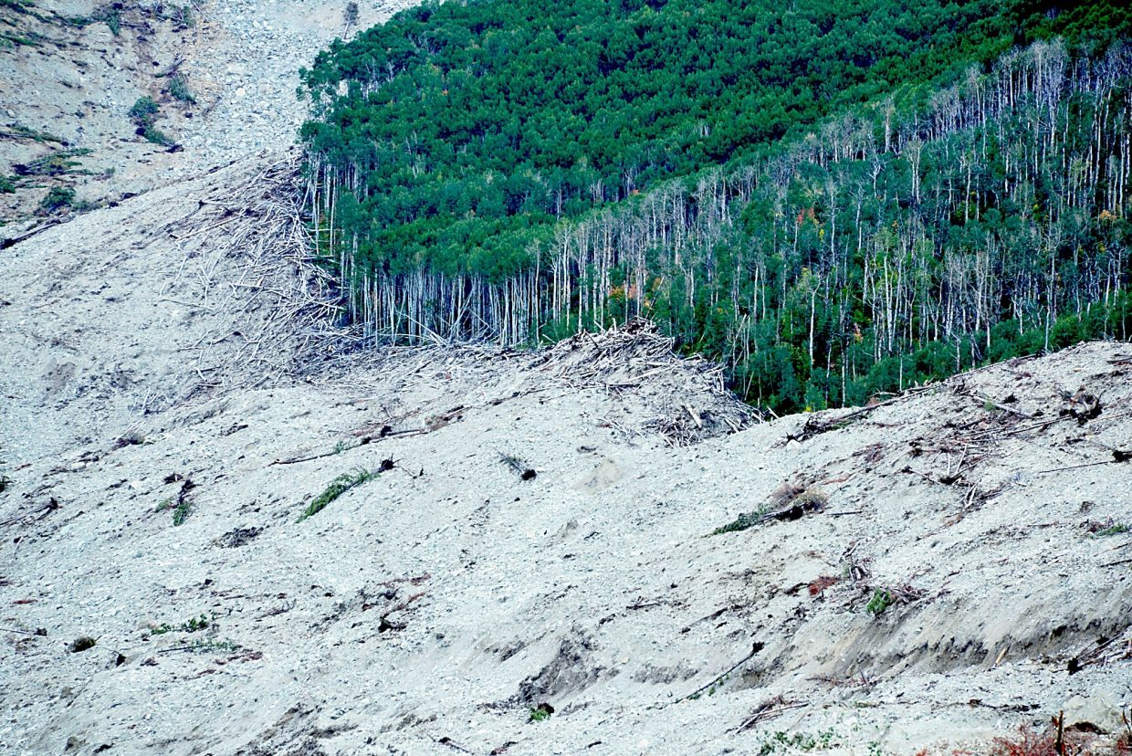 Looking south from half way up Grand Mesa's West Salt Creek Slide, a line of destruction shows the power and force of the recent catastrophe, where a grove of mature Aspen trees stand in stark contrast to its fallen comrades.