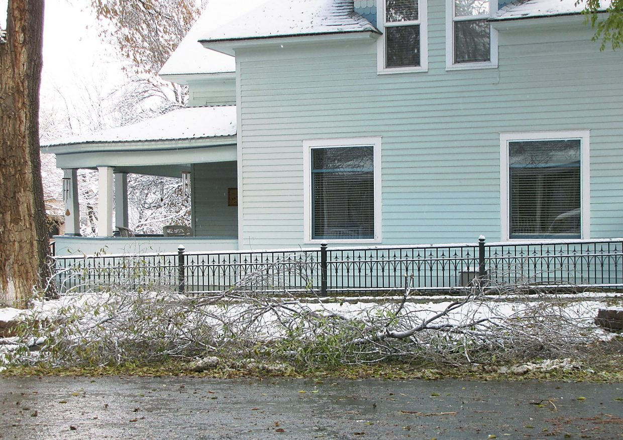 A few branches are down early Wednesday near downtown Glenwood.