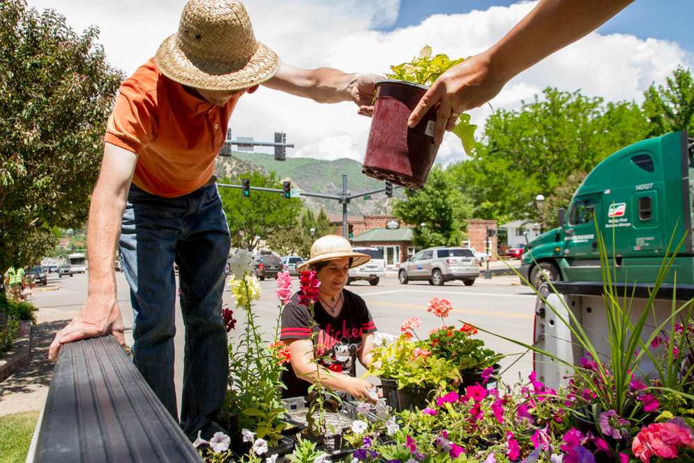 Mountain Valley Greenhouse employees Chris Collette and Lucy pick out an assortment of flowers to go in one of the downtown planters.