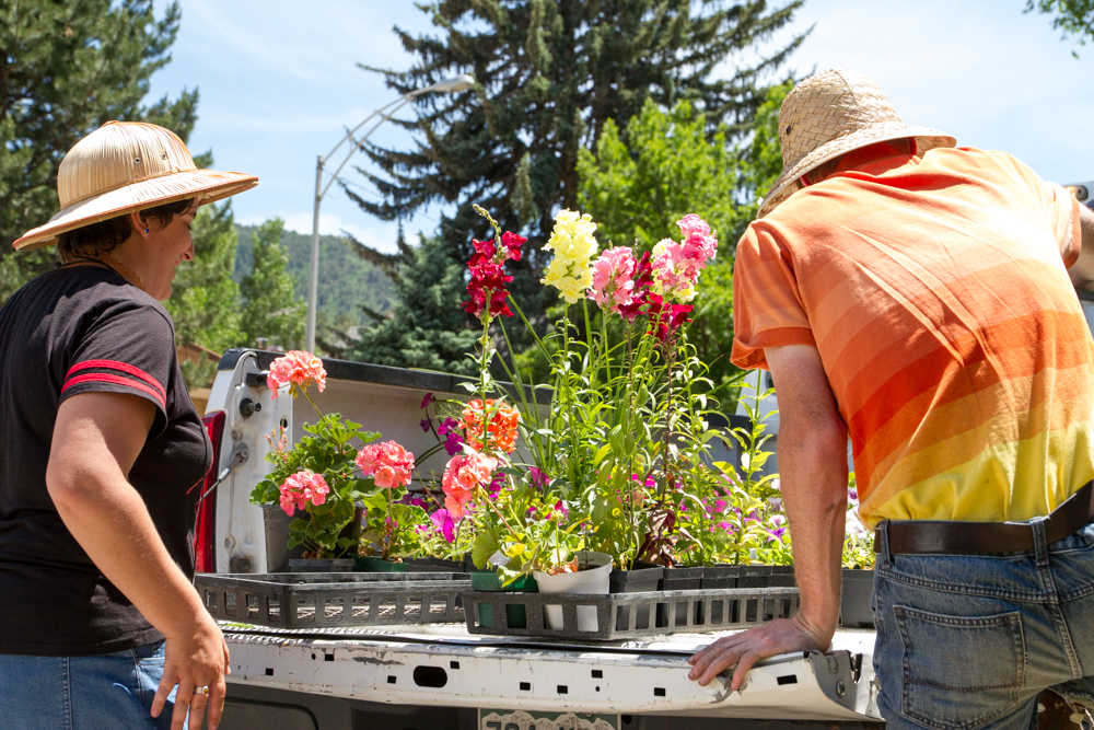 Mountain Valley Greenhouse employees Lucy and Chris Collette picking out flowers for the planter on 10th and Grand.
