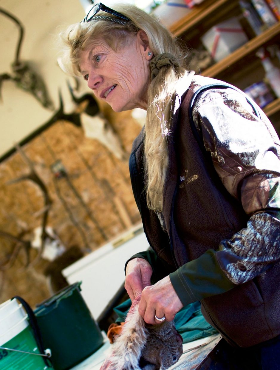Marianne Alameno-Stanek, head taxidermist and co-owner of Sportsman's Barn Taxidermy Co., works to prepare a bobcat hide.
