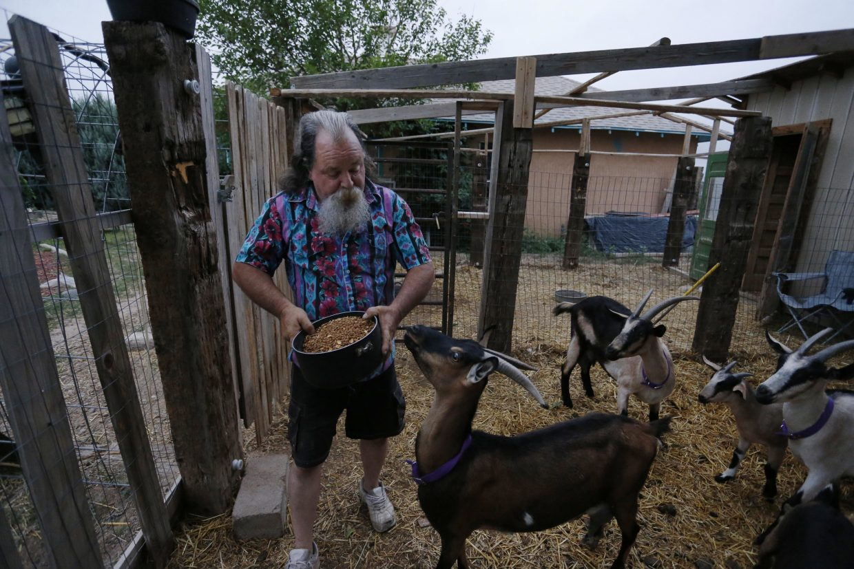 ADVANCE FOR USE TUESDAY, JULY 5, 2016 AND THEREAFTER-In this July 1, 2016 photo, Bill Hendren tends to goats on the property of a landowner who is allowing him to stay rent-free for a year in exchange for work, outside Manzanola, Colo. Otero County and other far-flung rural areas face an uphill battle against geography. Economic development officials say businesses increasingly relocate to areas close to international airports, putting far-flung parts of the country at a natural disadvantage. (AP Photo/Brennan Linsley)