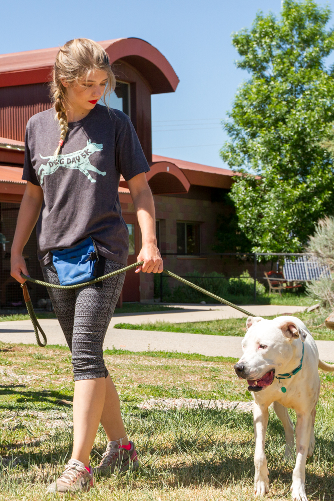 Staff member Jessica Jones walking Sammy who is currently recovering from ACL surgery. The surgery was made possible thanks for donations from Mags and Menace Make a Wish Foundation.