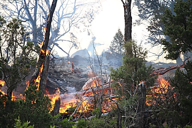 A firefighter works above flames Friday south of Carbondale.