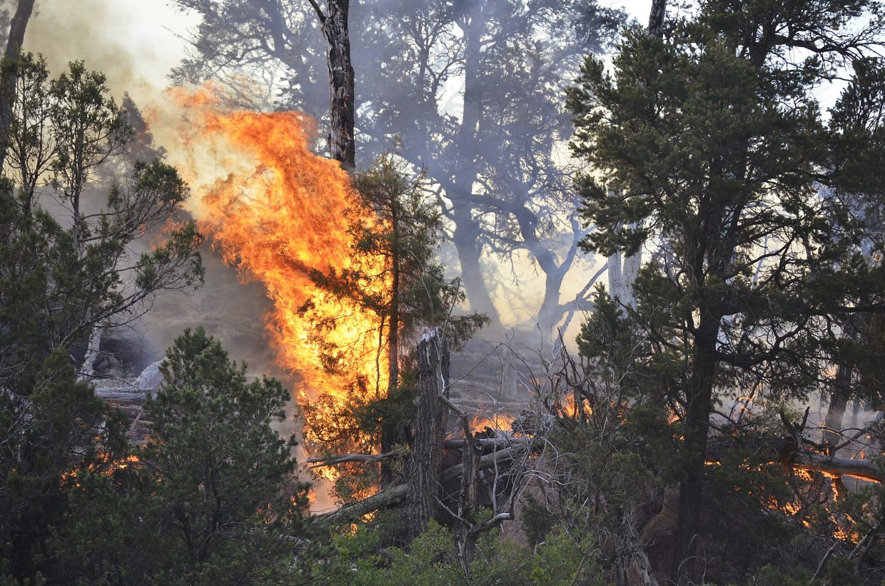 Flames rise from Friday's fire near Carbondale.