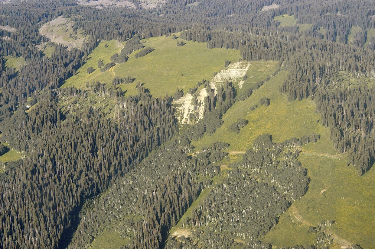 A section of largely undisturbed forest in the area near Mamm peaks south of Rifle, as seen from the air Thursday courtesy EcoFlight pilot Bruce Gordon. The area south of the Colorado River is where the Bureau of Land Management intends to allow dozens of previously issued oil and gas leases remain, some with and some without new leasing stipulations.