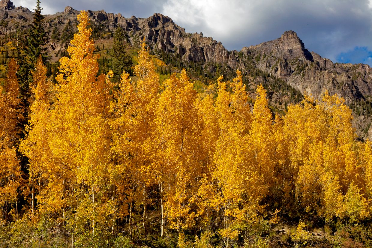 Peak color varies within Colorado, but the third week in September and the first week in October are typically peak season for fall foliage, according to Nate Goldberg, of the Beaver Creek Hiking Center.