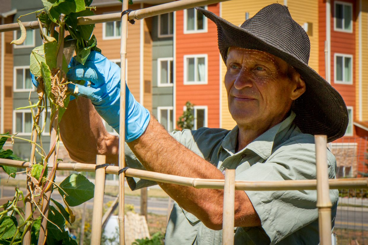 Paul Jankauskas treats the garden like a full time job and is often there for hours every day.