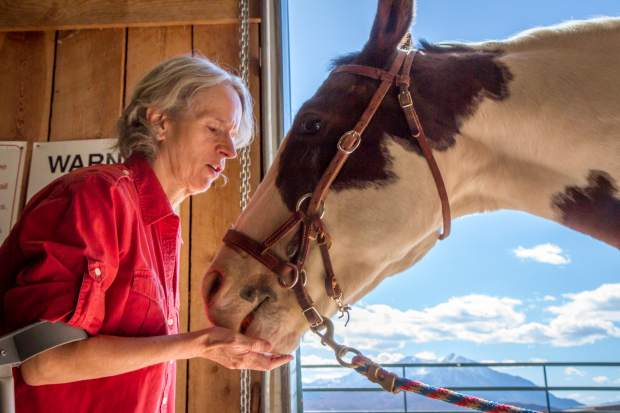 Anne Merz feeding the horse Ringo after her session at WindWalkers.