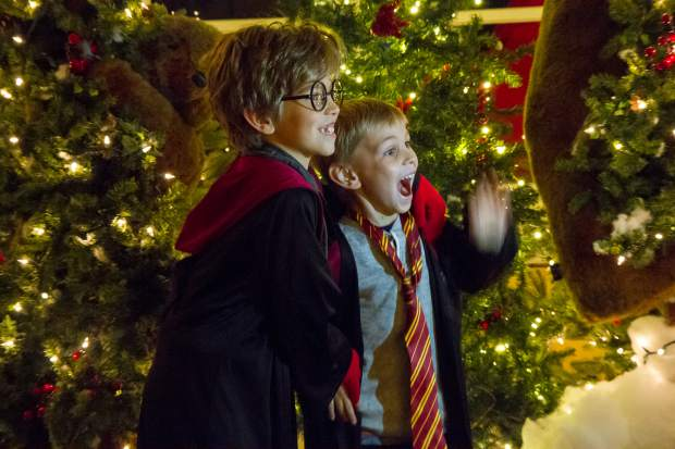Eight-year-old Zach (left) and Tyler Mattson (6) pose for photos infront of one of the displays at the 27th annual Festival of Lights at the Hotel Colorado.
