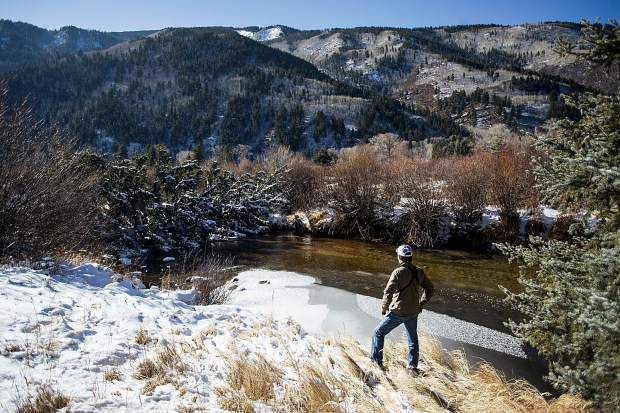 John Armstrong, Pitkin County Open Space and Trails senior ranger, down river of approximately an 80-foot-tall fallen spruce tree across the Roaring Fork River in the North Star Nature Preserve on Friday.