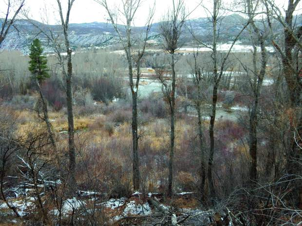 The Aspen-Sopris Ranger District wants to sell this 40-acre parcel that includes wetlands, rare flowers, Roaring Fork River frontage and a popular hiking route.