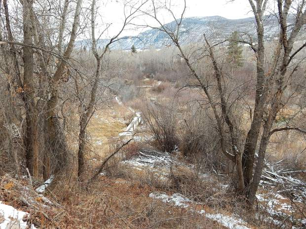 The U.S. Forest Service is proposing to sell this land along the Roaring Fork River in El Jebel. However, the Forest Service said this parcel's ecological integrity and access by the public will be preserved even if it is sold.