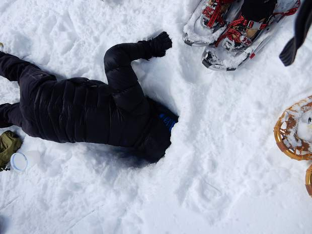 Liza Mitchell reaches down more than three feet below the snow surface to collect a sample of snow near the ground.
