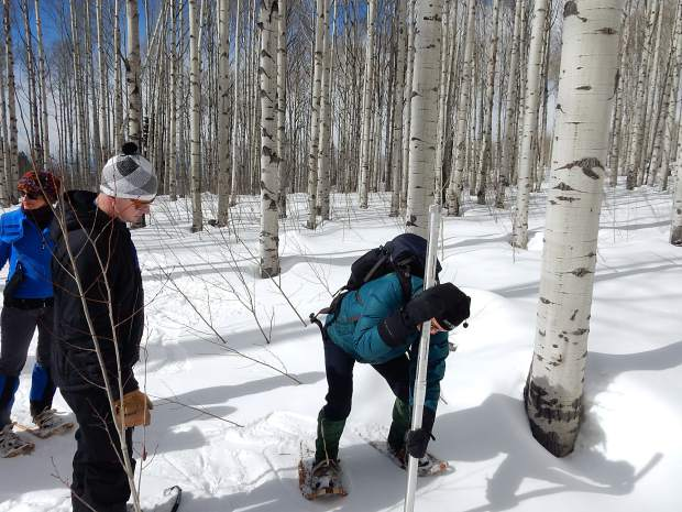 John Rutland (right), a Marble resident participating in a snow survey course, jams a special, hollow metal tube into the snowpack to take a core sample. Derrick Wyle of the U.S. Natural Resources Conservation Service supervises.