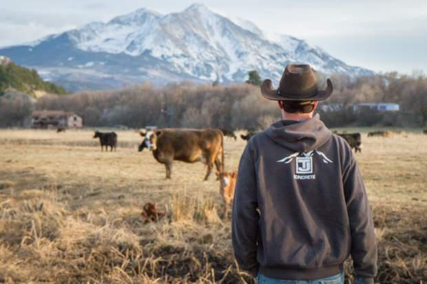 Parker Nieslanik does an evening walk-through to check on the herd and calves.