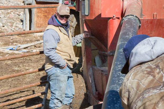 Johnny and Parker Nieslanik work together to finish a round of daily chores on the ranch.