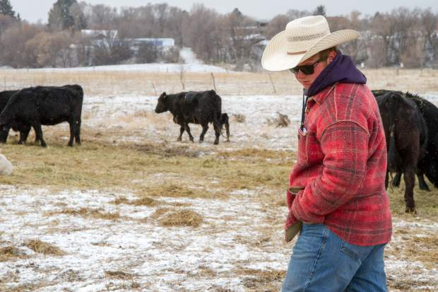 Johnny Nieslanik checks on the herd after a cold and snowy night.
