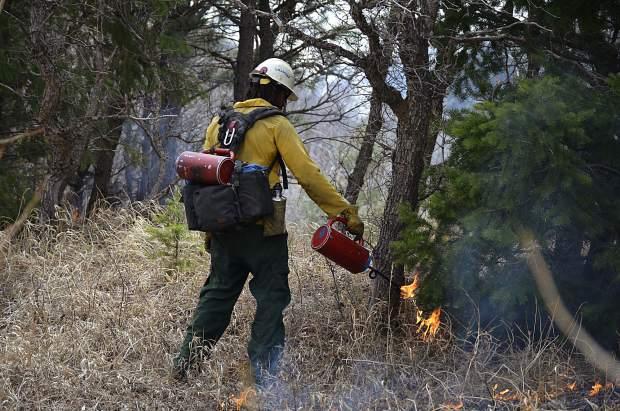 Fire crews use drip torches to ignite sections of overgrown mountain brush.