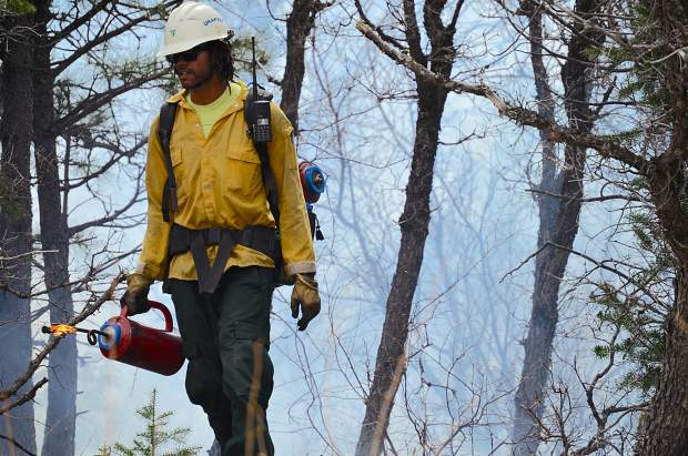 A member of the fire crew on a prescribed burn in Avalanche Creek paces behind a line of flames he ignited with a drip torch.