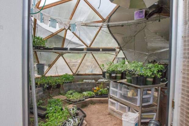 Inside the grow dome at Yampah Mountain High School.