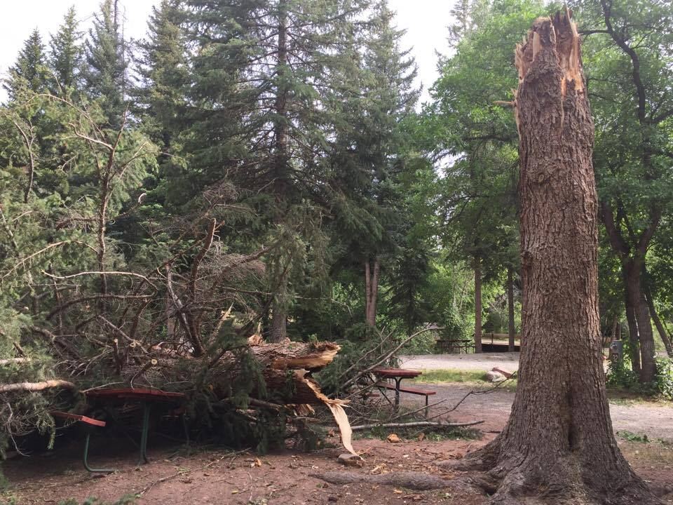 Elk Creek Campground will stay open throughout the summer and could use some manpower to help clear out some of the fallen trees.