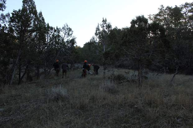 Crews with the SWIFT (State Wildland Inmate Fire Team), which were contacted to help with the project, are seen up at the New Castle's Elk Run subdivision working on fuels mitigation to prevent the spread of wildfire.