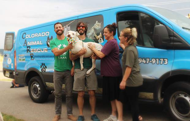 Several employees of Colorado Animal Rescue stayed late or came to the shelter during their off hours to welcome Zeb. The pit bull mix went missing in March.