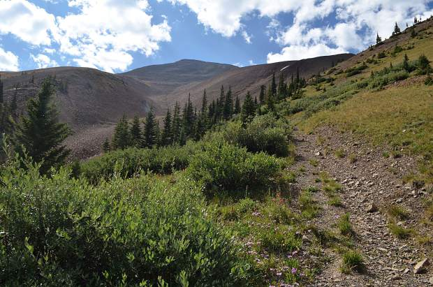 From the moment Little French Gulch leaves treeline, hikers are greeted with a series of scree fields and alpine meadows to tackle before the summit of Mount Guyot.