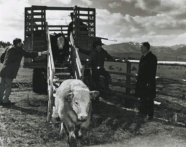 Left to right, Rod Anderson, unknown cowboy (possibly Bill Wright), unknown cowboy and CMC President Elbie Gann in a ranch management class at Spring Valley, circa early 1970s.