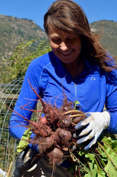 Marilee Rippy, one of the original members to start to the community garden in 2008, hauls in an armful of beets pulled fresh from her community garden plot.