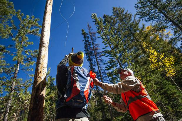 Independence Pass Foundation volunteer leader Tim Hall, right, gets assistance from a Jaywalker Lodge participant removing wire from telephone poles on Independence Pass in the Grottos area on Thursday morning.
