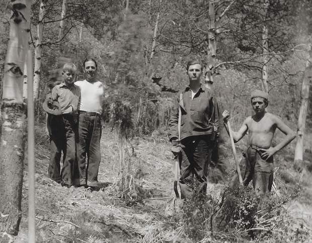 A group of CCC boys on the then Holy Cross National Forest, clearing invasive plants for stock animals, 1935.