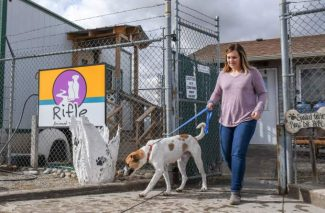 Plans for Rifle Animal Shelter unleashed, commissioners back project