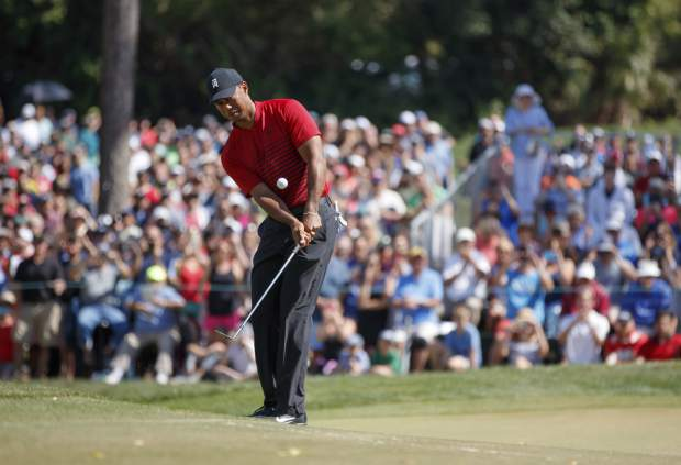 Tiger Woods chips on the fourth green during the final round of the Valspar Championship golf tournament Sunday, March 11, 2018, in Palm Harbor, Fla. (AP Photo/Mike Carlson)