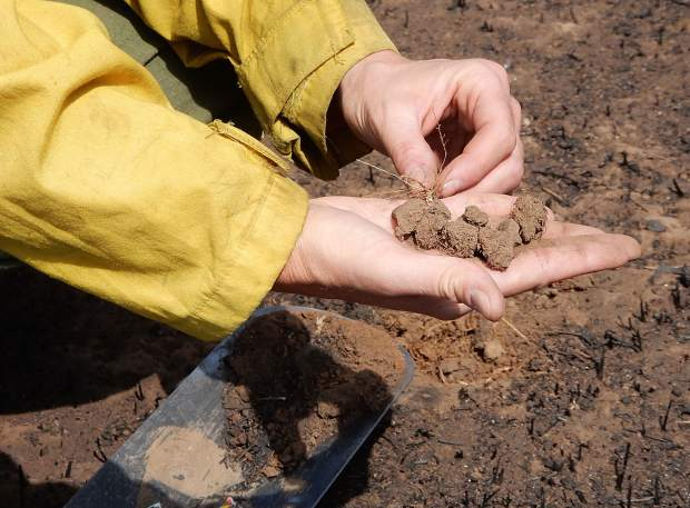 Beth Anderson, a soil scientist with the U.S. Forest Service, shows Saturday how roots help maintain soil stability beneath the charred surface within the Lake Christine Fire.