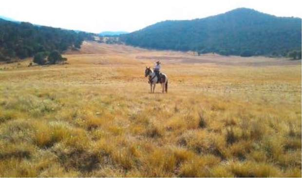 BLM's Sutey Ranch plan limits recreational use seasonally