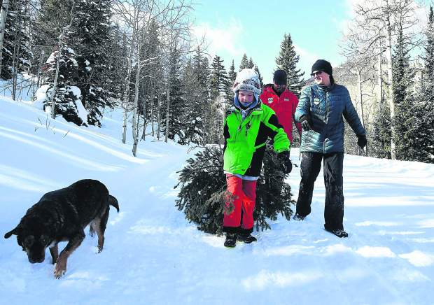 The Clifford family, in Jack, 9 Damon and Kristin along with the family dog Boomer, make their way back to their truck after harvesting the prefect tree for Christmas last Sunday near Sunlight Mountain.