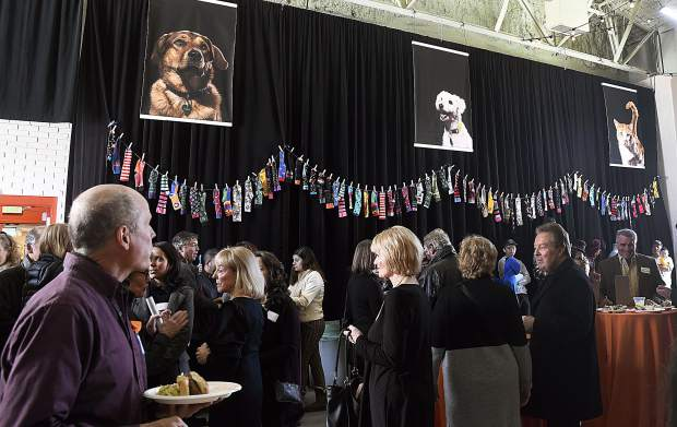 Pictures of the pets Jim Calaway helped save hang in the gym at the Third Street Center, as people gather during the reception Saturday in Calaway's honor.