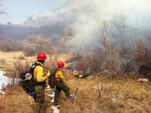 Prescribed burn planned near Glenwood in coming days